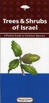 Trees & Shrubs of Israel